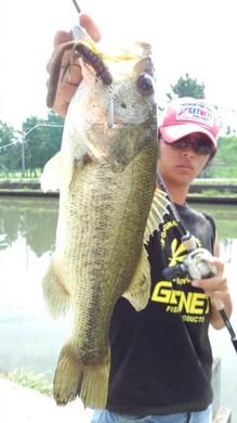 2 45cm 東岸水路で釣れるリグ 直リグ&ホッグ43 .jpg