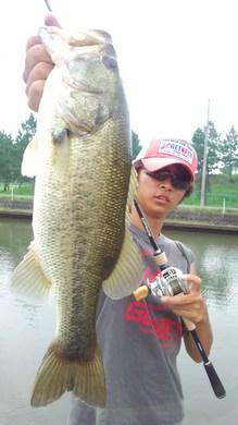 47cm 琵琶湖東岸オカッパリで釣れる9月6日.jpg