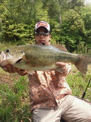 5月の野池で釣れるルアー ジャスターホッグ23.jpg