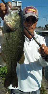 52cm 琵琶湖の岸釣りで 19日.jpg