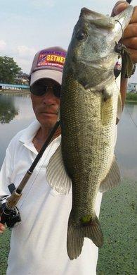 6 45cm 釣れる東岸オカッパリ.jpg