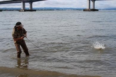 6月の琵琶湖で釣れる.JPG