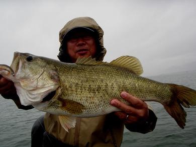 7月1日 琵琶湖でロクマル釣れる.JPG